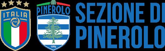 Banner Istituzionale Sezione AIA di Pinerolo